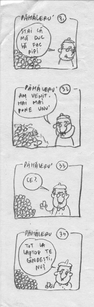 pah31-34.jpg